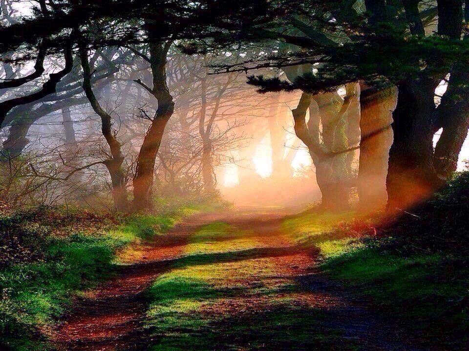 Suzanne Pardue on | Sunrise/Sunset/Photography | Nature