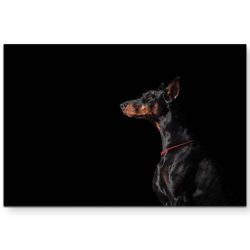 East Urban Home Portrait Of A Doberman Side View Photographic