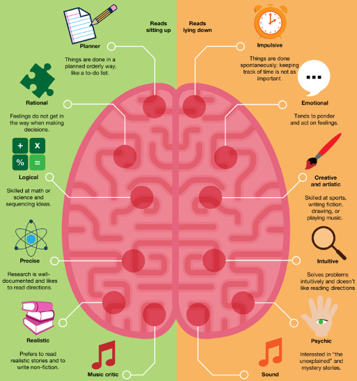 Left vs right brain the big picture south pawed pinterest left vs right brain the big picture ccuart Choice Image