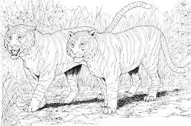 nice colouring pages for adults to colour in of animals to print - Google Search