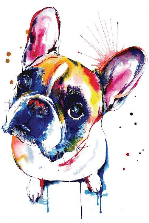 Frenchie II - Canvas Print