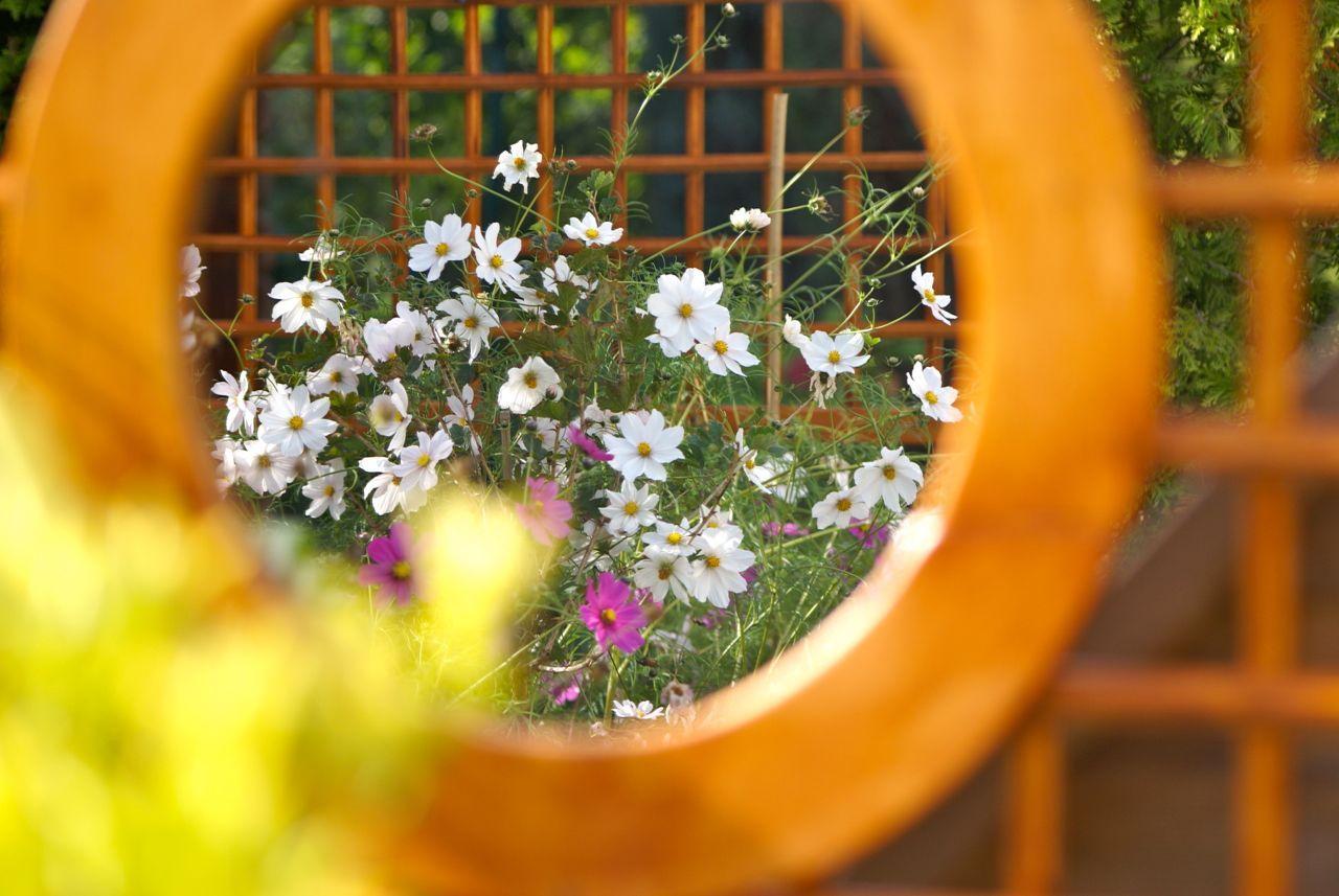 Spiegel Im Garten tipp trompe d loeil spiegel im garten die perfekte illusion mit