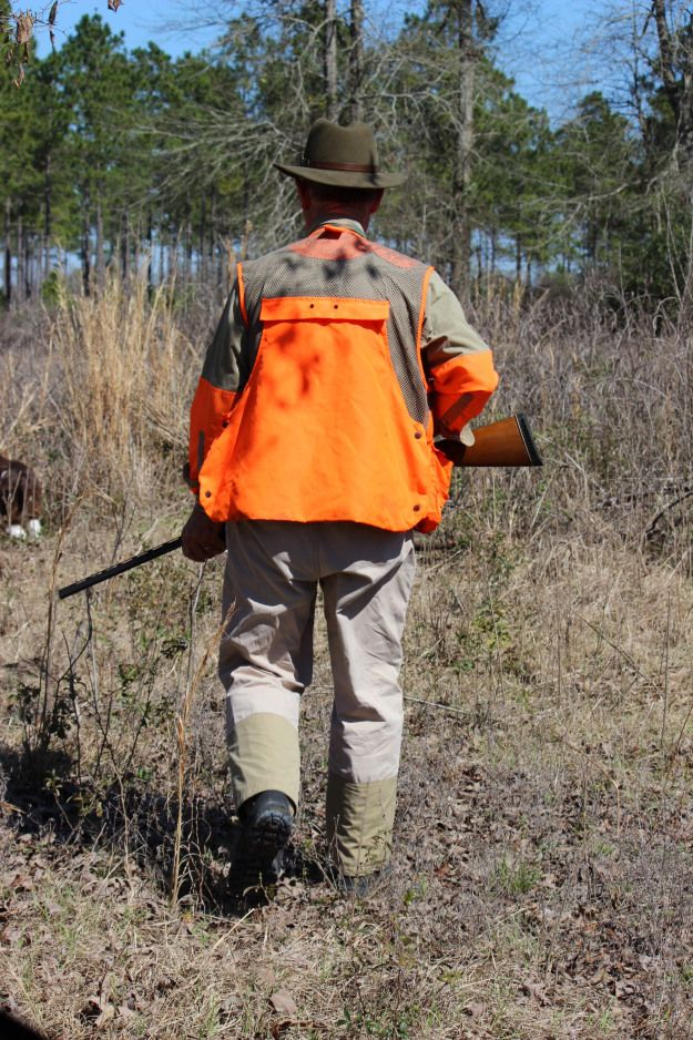 Truman and Buster Quail Hunting | Oysters & Pearls