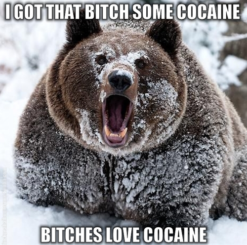 I got that bitch some cocaine. Bitches love cocaine.