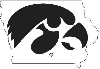 Iowa Hawkeyes Iowa Hawkeyes Iowa Hawkeyes Diy Iowa Hawkeye