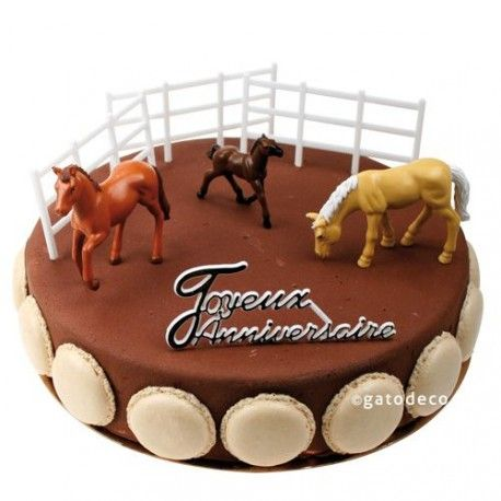 idée anniversaire cheval