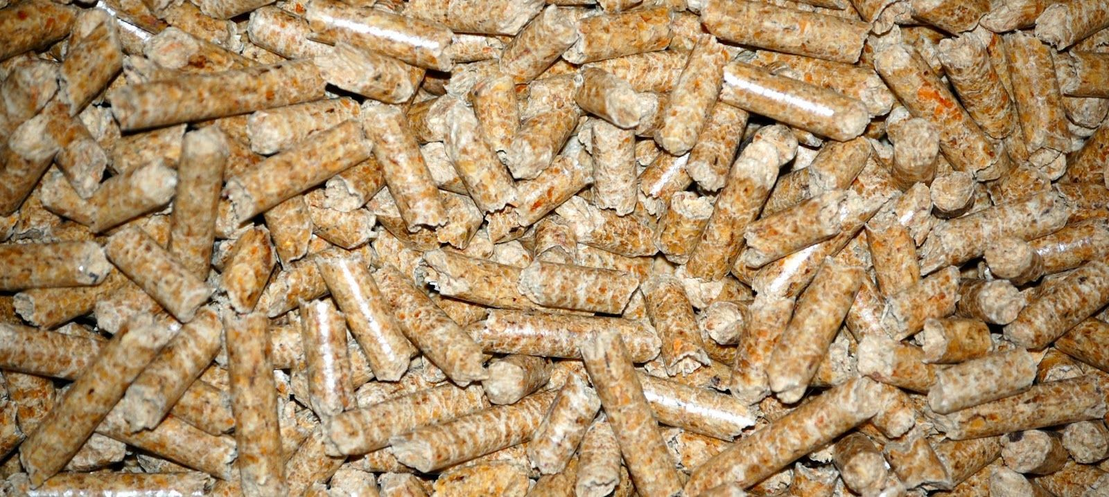 Eco Friendly Cat Litter Wood Pellets With Images Cheap Cat Litter Cat Litter Cat Training Litter Box