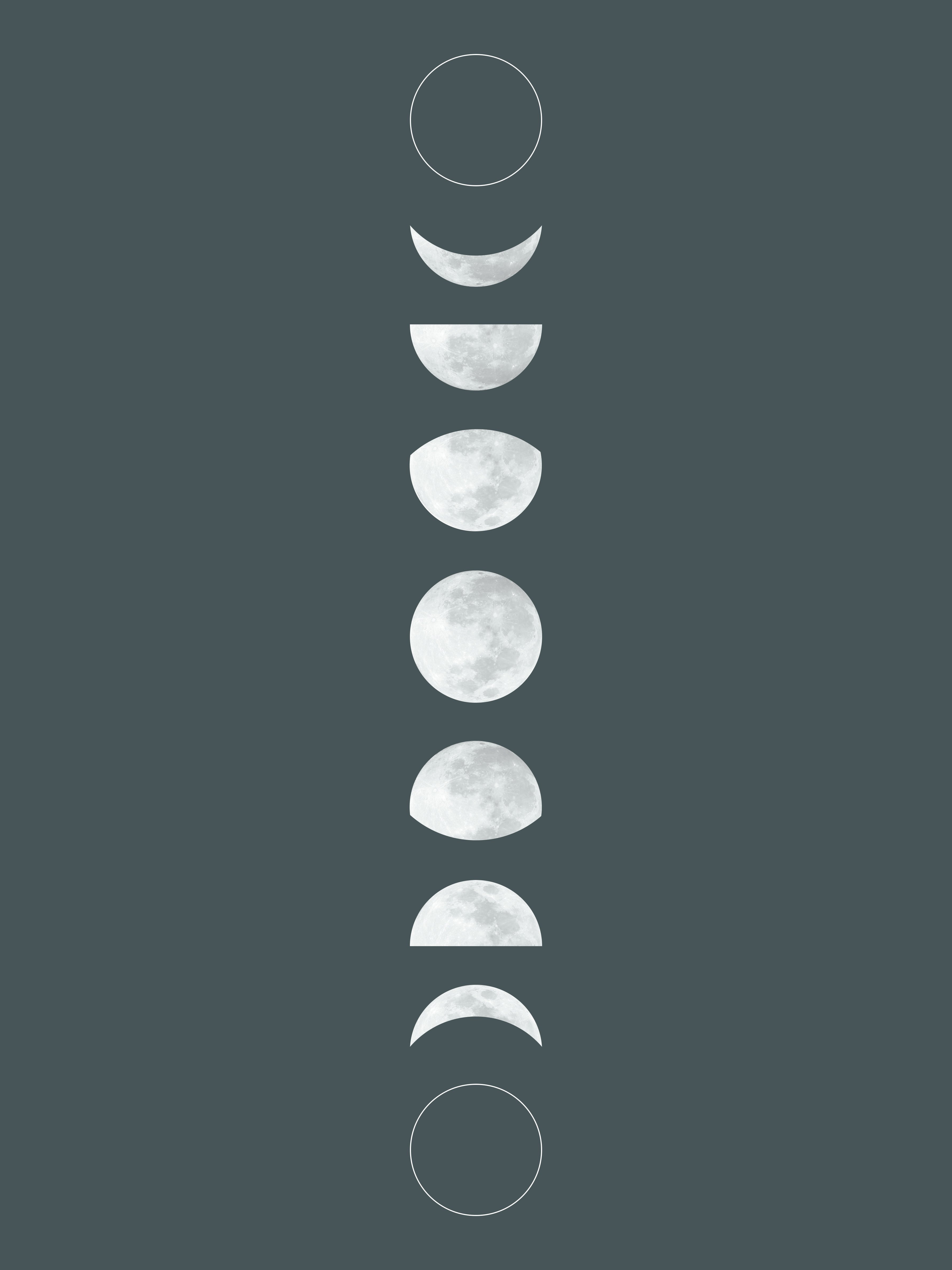 graphic about Moon Phases Printable referred to as The Nest: No cost printable moon step artwork and routine