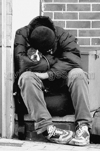 If One Day You Lose Everything That Day You Will Know How Many Real Friends You Have Homeless Homeless People Homeless Man Animals Friends