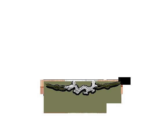 Custom Made - Apriati