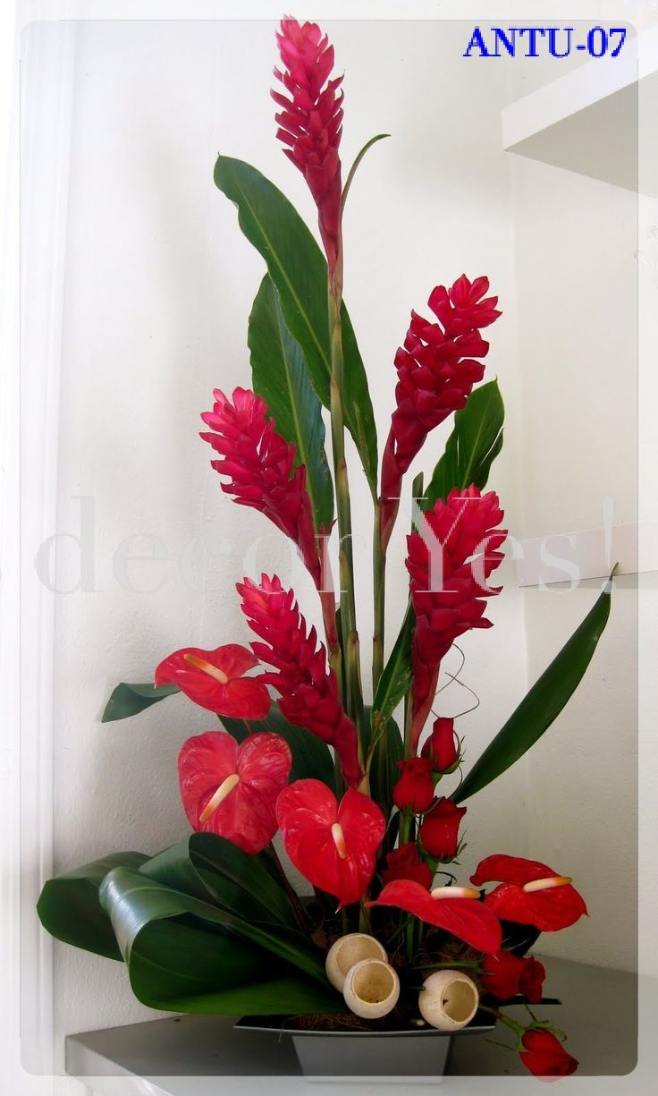 Anthurium And Ginger Tropical Floral Arrangements Tropical Flower Arrangements Modern Flower Arrangements