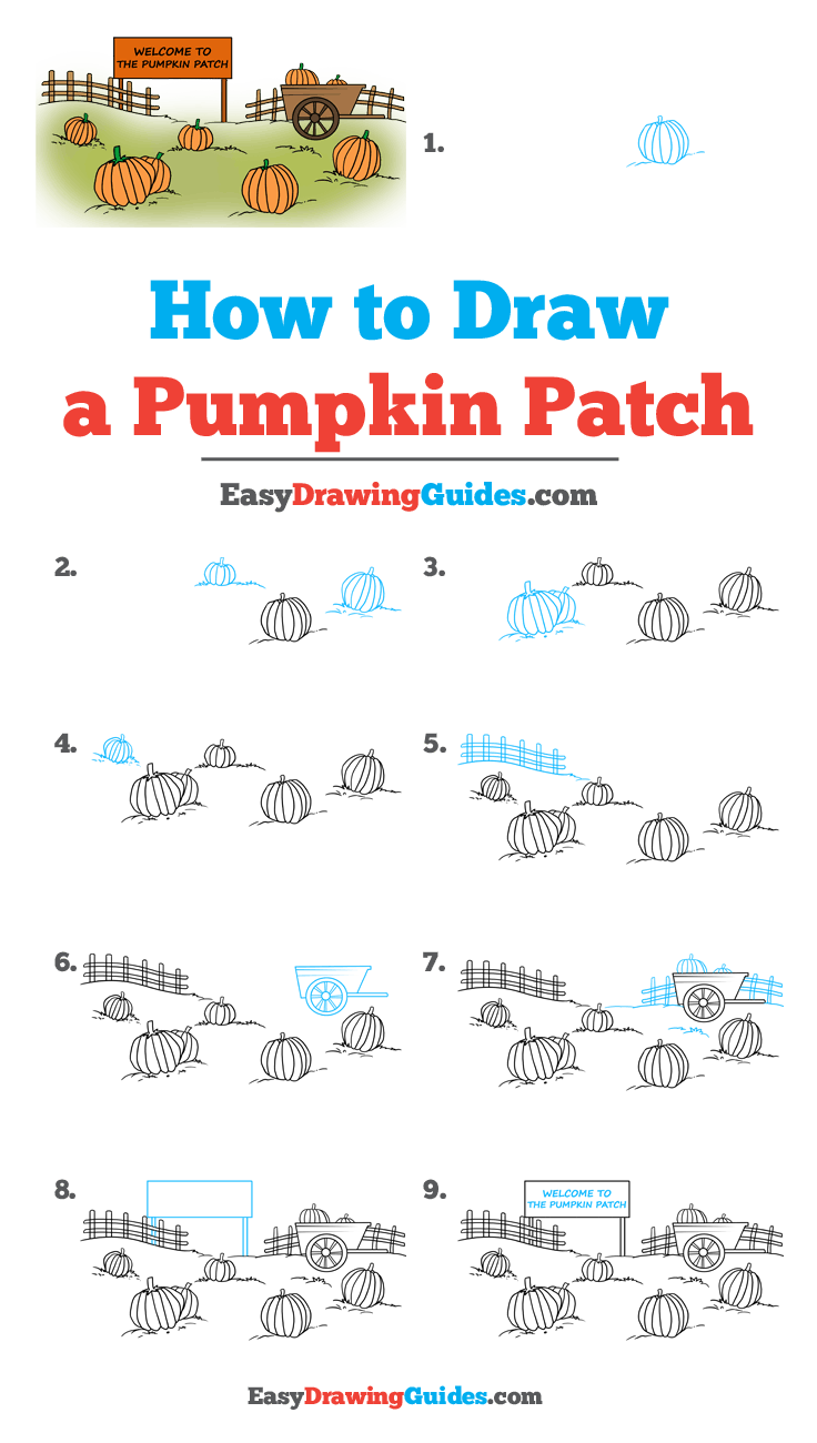 How To Draw A Pumpkin Patch With Images Drawing Tutorial Easy