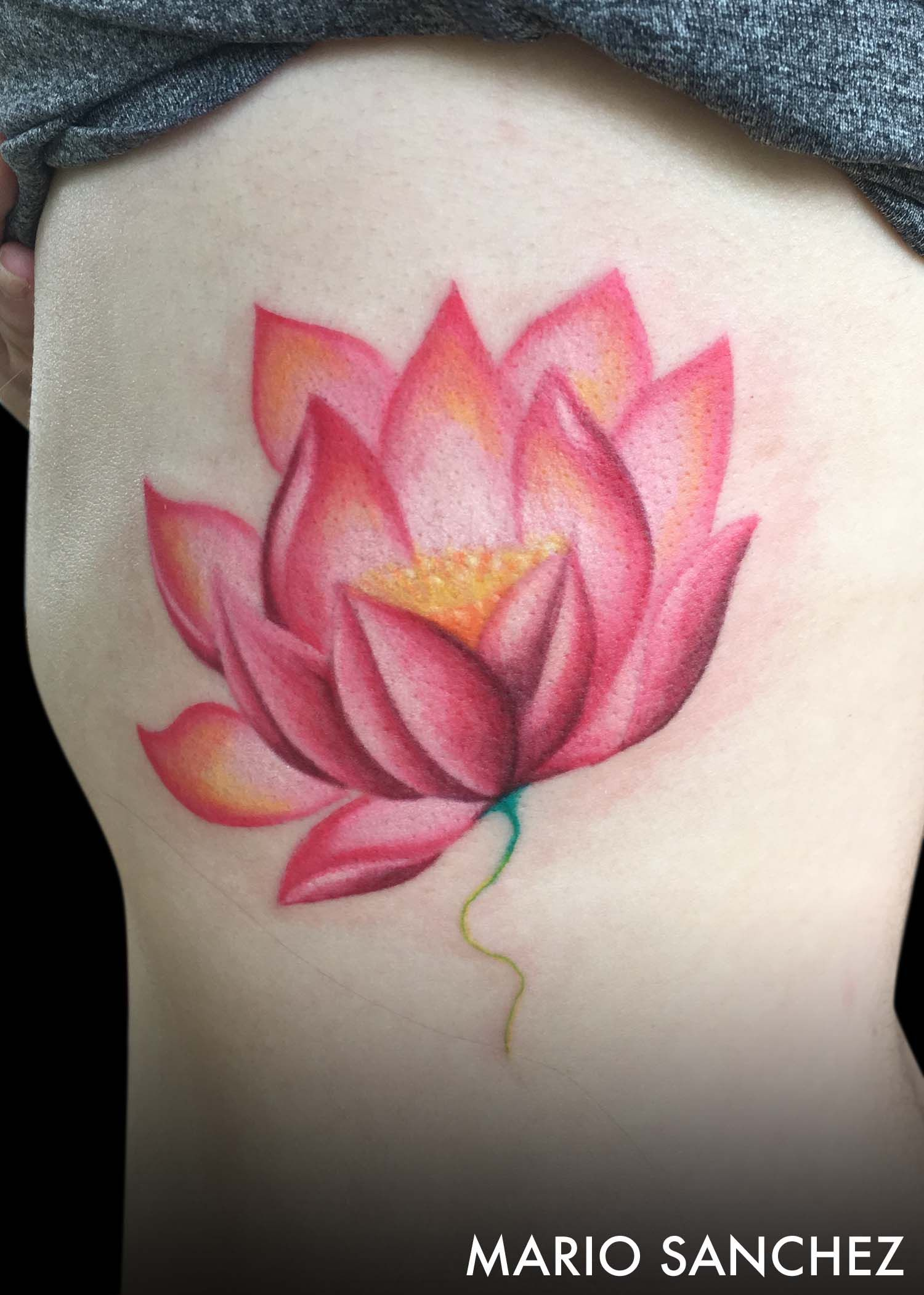 Color Lotus Flower Tattoo Japanese Animals Flowers Color