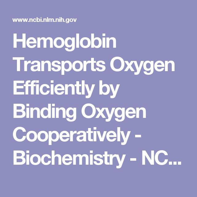Hemoglobin Transports Oxygen Efficiently By Binding Oxygen