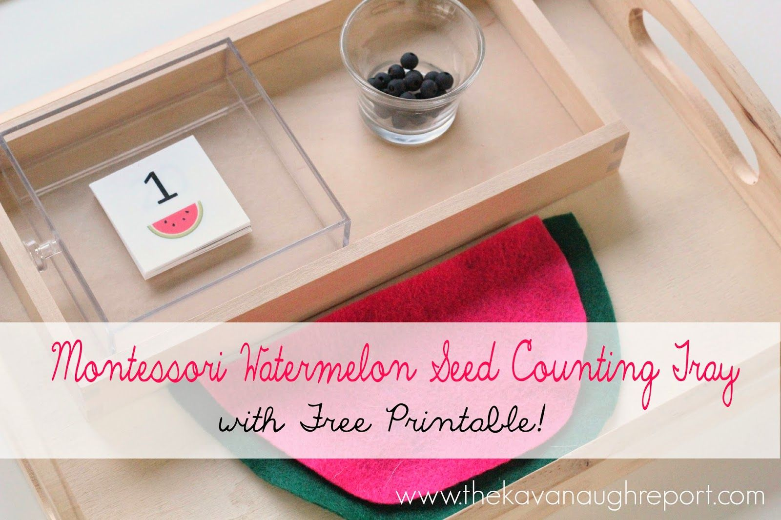 Montessori Inspired Watermelon Seed Counting Printable