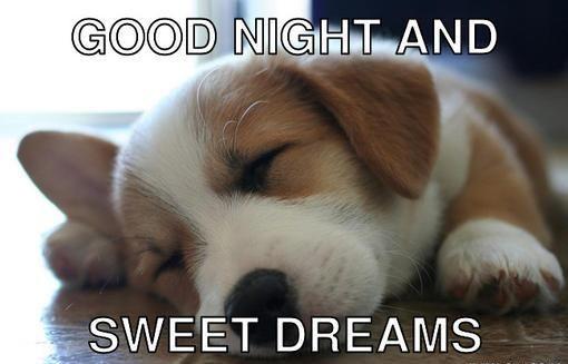 75 hilarious good night