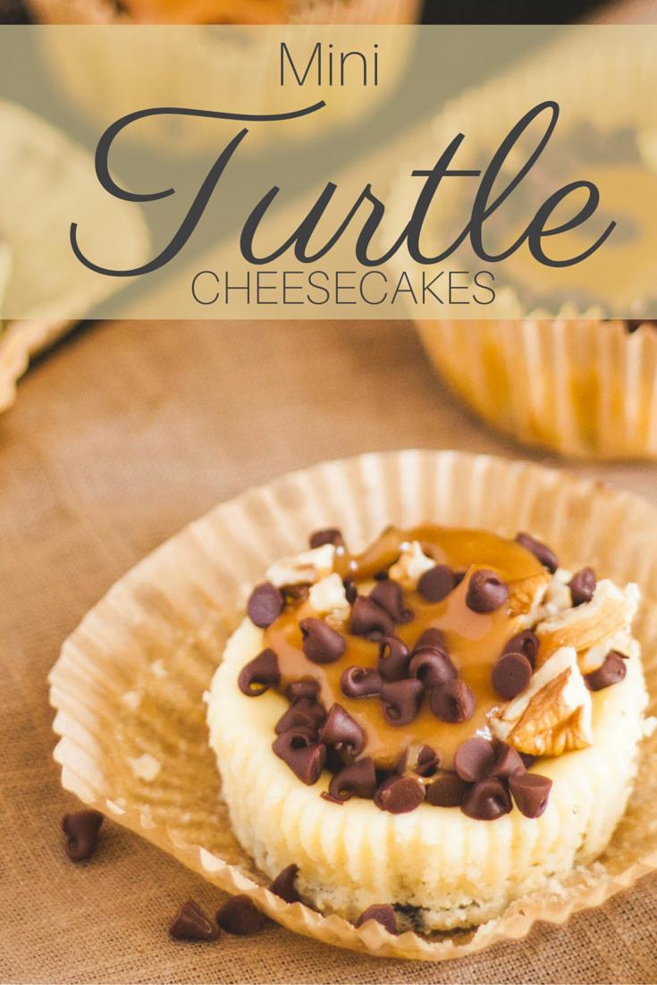 Mini Turtle Cheesecakes | Jennifer Cooks