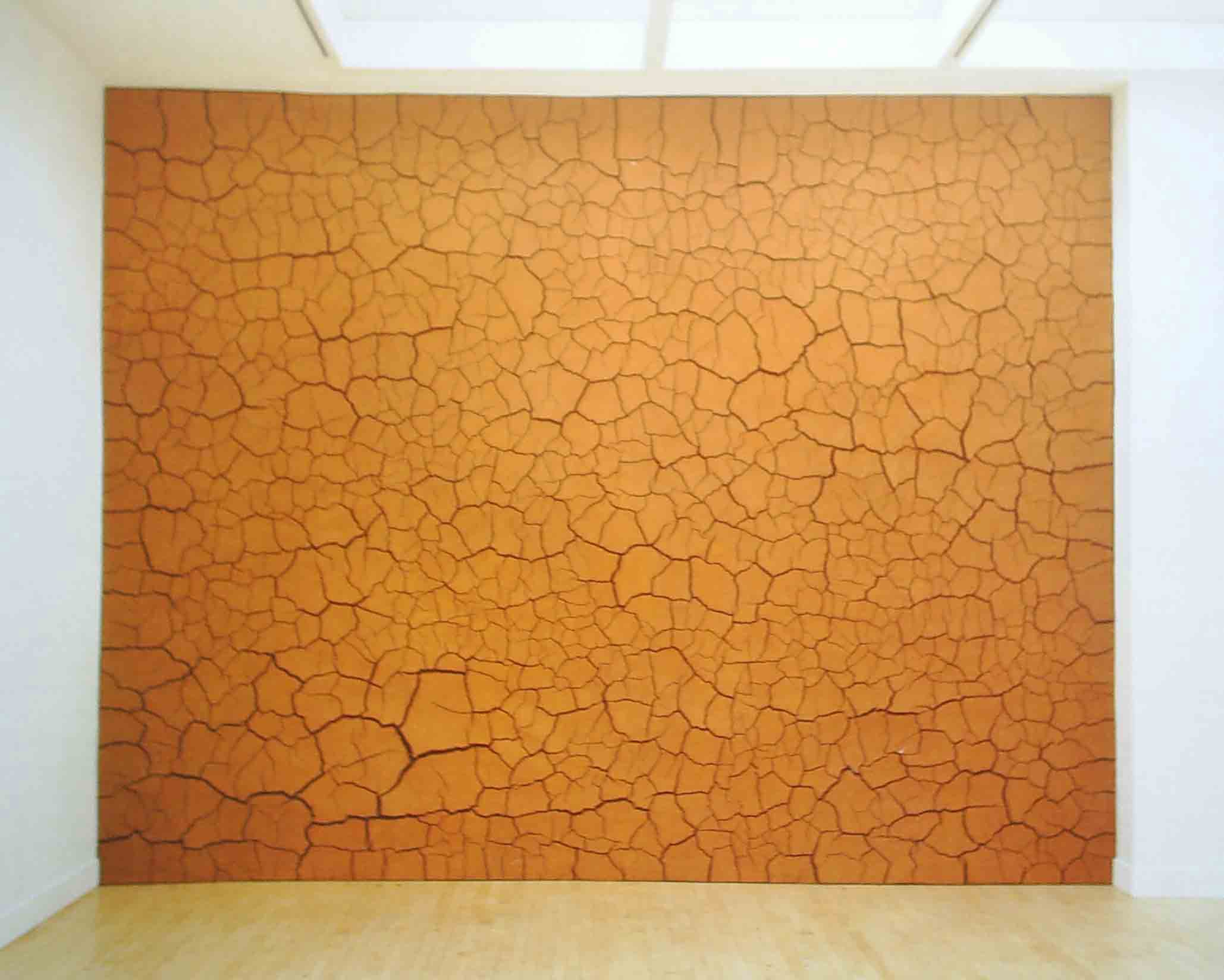 Andy Goldsworthy Wolfgang Laib Andy Goldsworthy Clay Wall