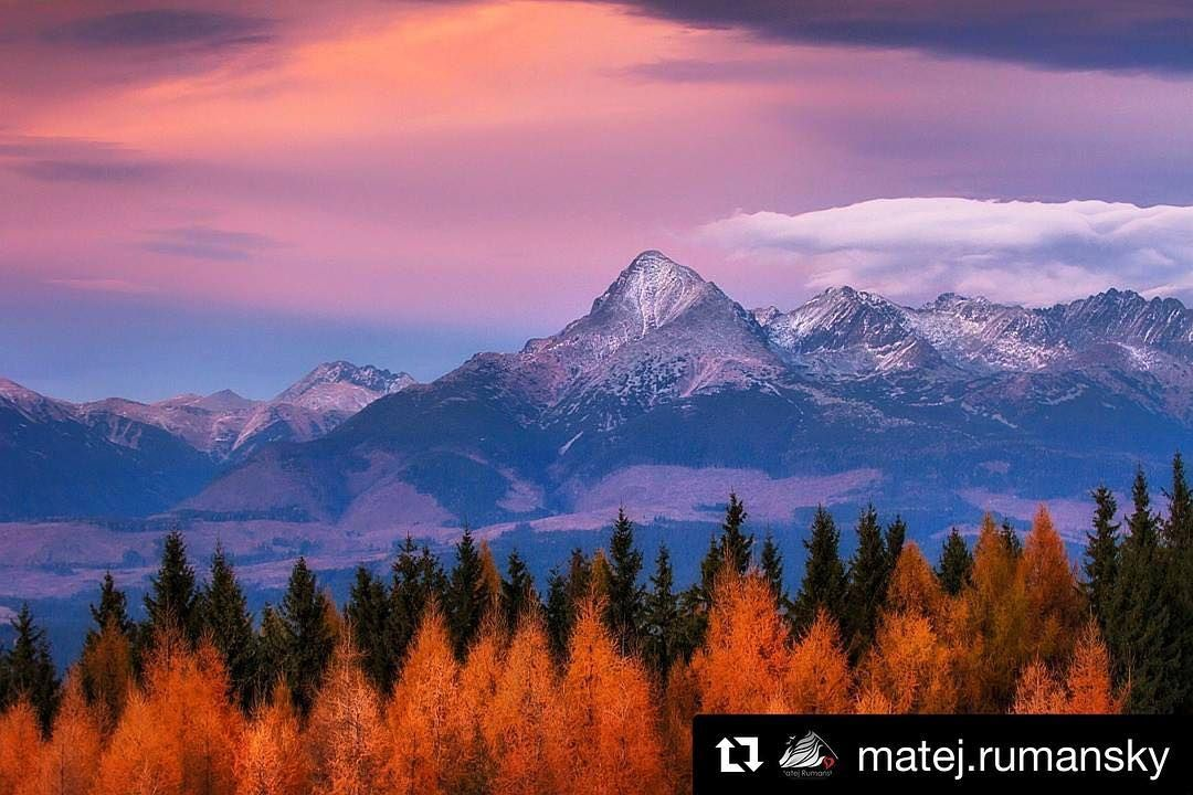"#praveslovenske od  @matej.rumansky  ""2494 m . ."" location: Mount Kriváň  SLOVAKIA www.rumansky.com http://ift.tt/2km7Tio  #slovensko #mountains #slovakia #tatramountains #krivan #tatry #trees #forest #nature #landscape"