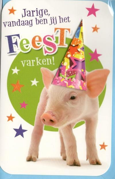 Citaten Voor Verjaardag : Humorkaart voor een verjaardag verjaardagskaarten