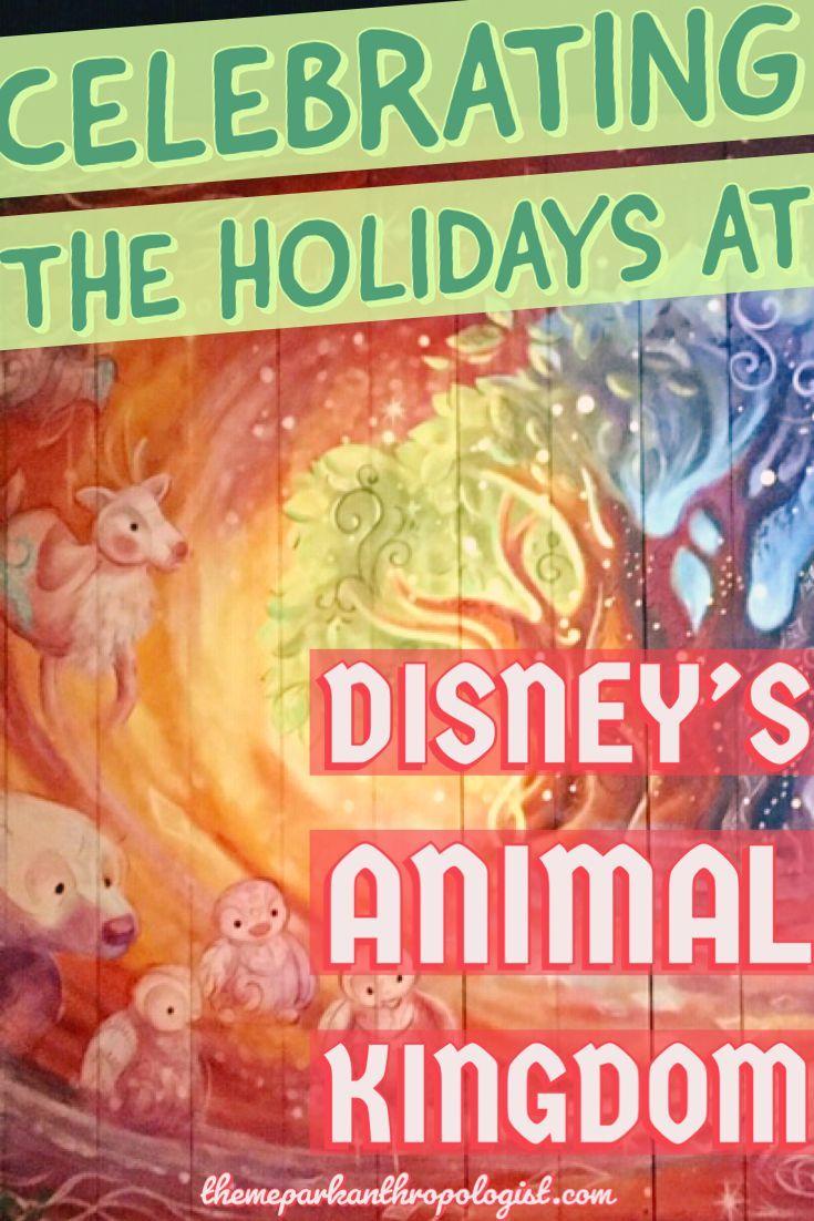 Celebrating the Holidays at Disney's Animal Kingdom - Theme Park Anthropologist #animalkingdom