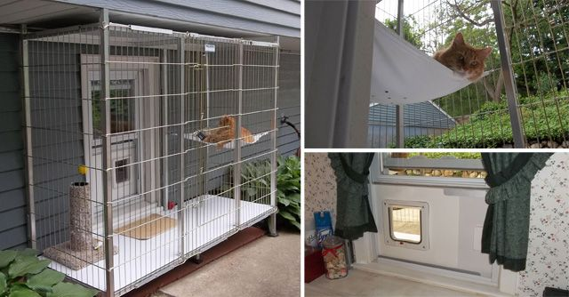 catio made from dog kennel Google Search Catio