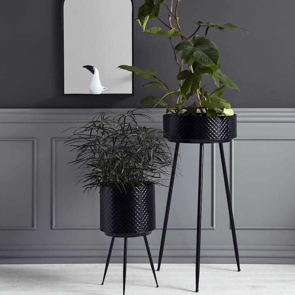 Are you interested in our black embossed planters with