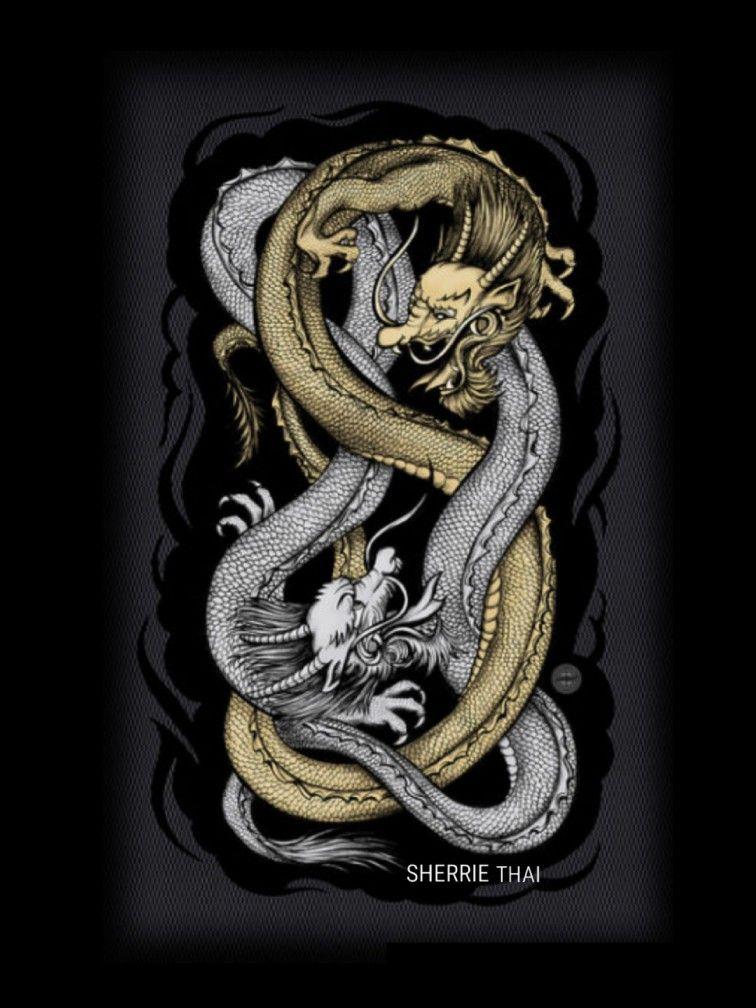 дракон близнец картинка конфликтные