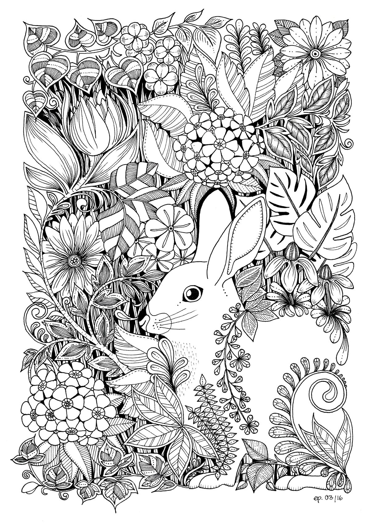 Easter Bunny on Behance Easter bunny, Blank coloring pages