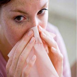 Effective Herbs For Immediate Sinus Relief