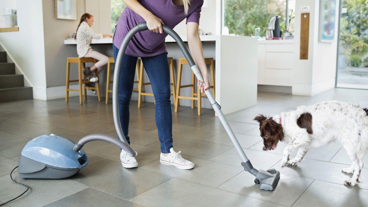 10 Best Vacuums For Allergies Reviewed In Detail May 2020 Vacuums Pet Proof Best Vacuum