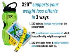 standard process purification weight loss
