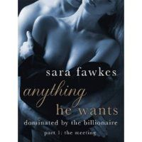 Anything He Wants 1: The Meeting (Dominated by the Billionaire, #1)