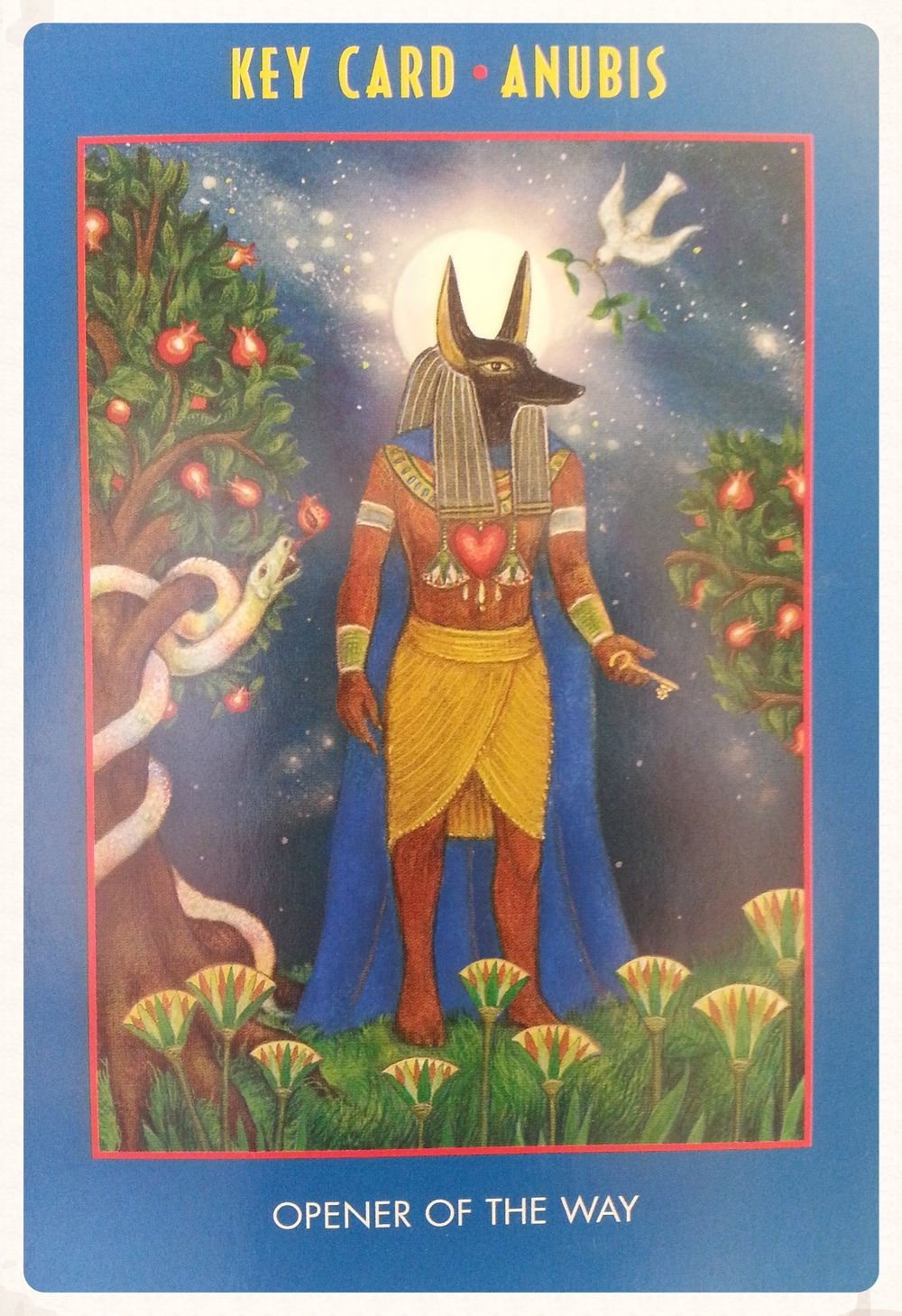 Anubis oracle oracle 2 pinterest anubis oracle biocorpaavc Gallery