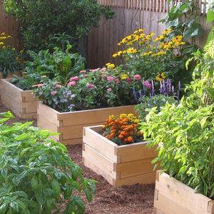 Natural Cedar Raised Garden Beds -   22 enclosed garden beds ideas