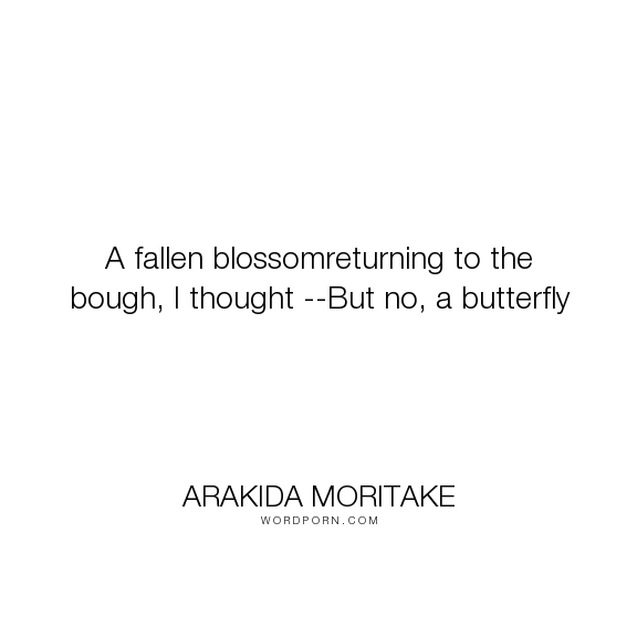 """Arakida Moritake - """"A fallen blossomreturning to the bough, I thought --But no, a butterfly"""". poetry, butterflies, flowers, blossoms"""