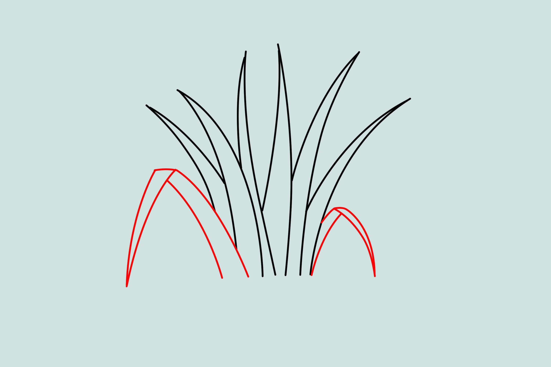 Трава рисунок карандашом для детей