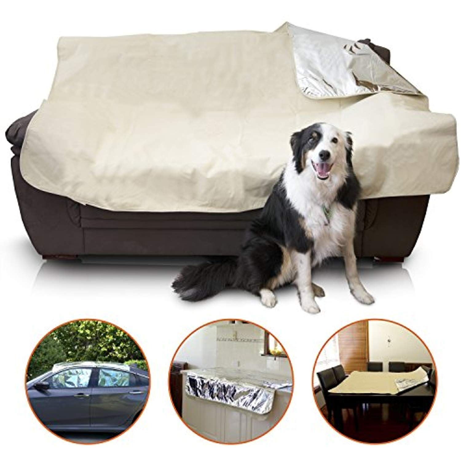 Mosher Pets Keep Dogs and Cats Off the Couch, Counter and