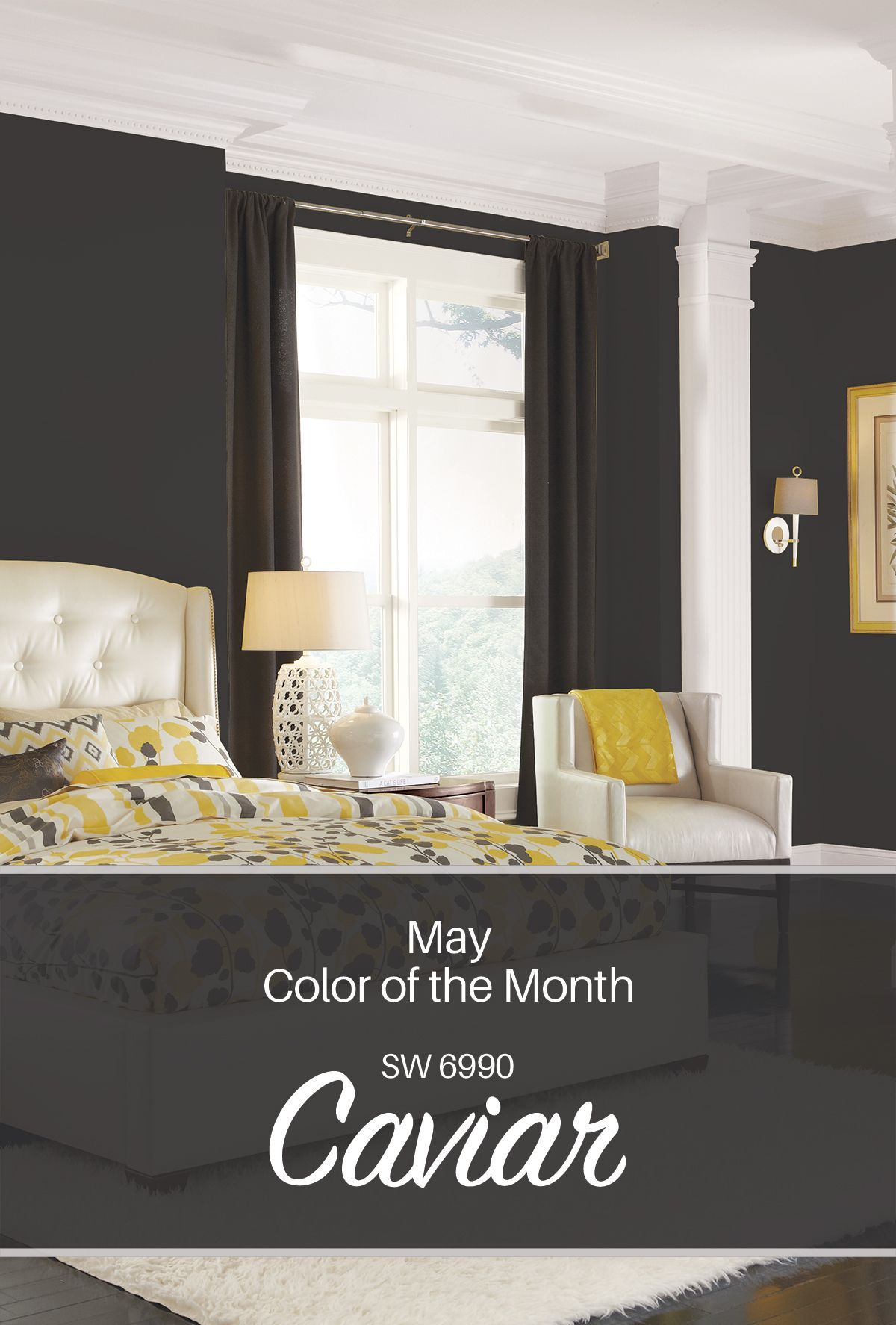 Sherwin Williams May Color Of The Month Caviar Sw 6990