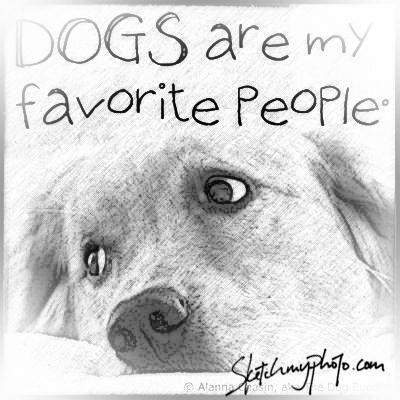 Always Dog Best Friend Dog Love Dog Quotes