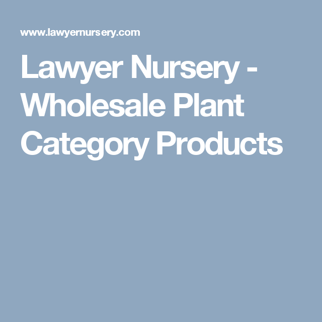 Lawyer Nursery Whole Plant Category Products