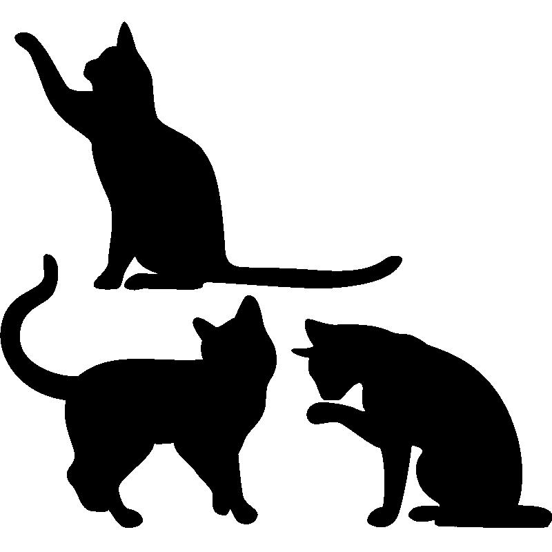 stickers muraux animaux sticker signe corporel de chat. Black Bedroom Furniture Sets. Home Design Ideas