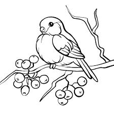 Картинки по запросу раскраски осенние деревья