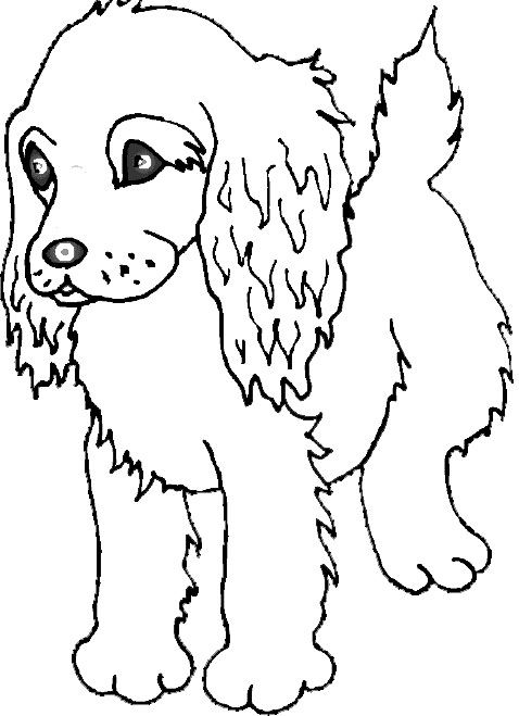 I have download Dog Would Like To Find Prey Coloring Page ...