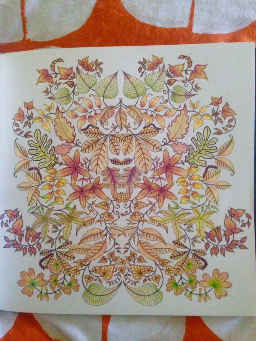 From Johanna Basfords Secret Garden Finished