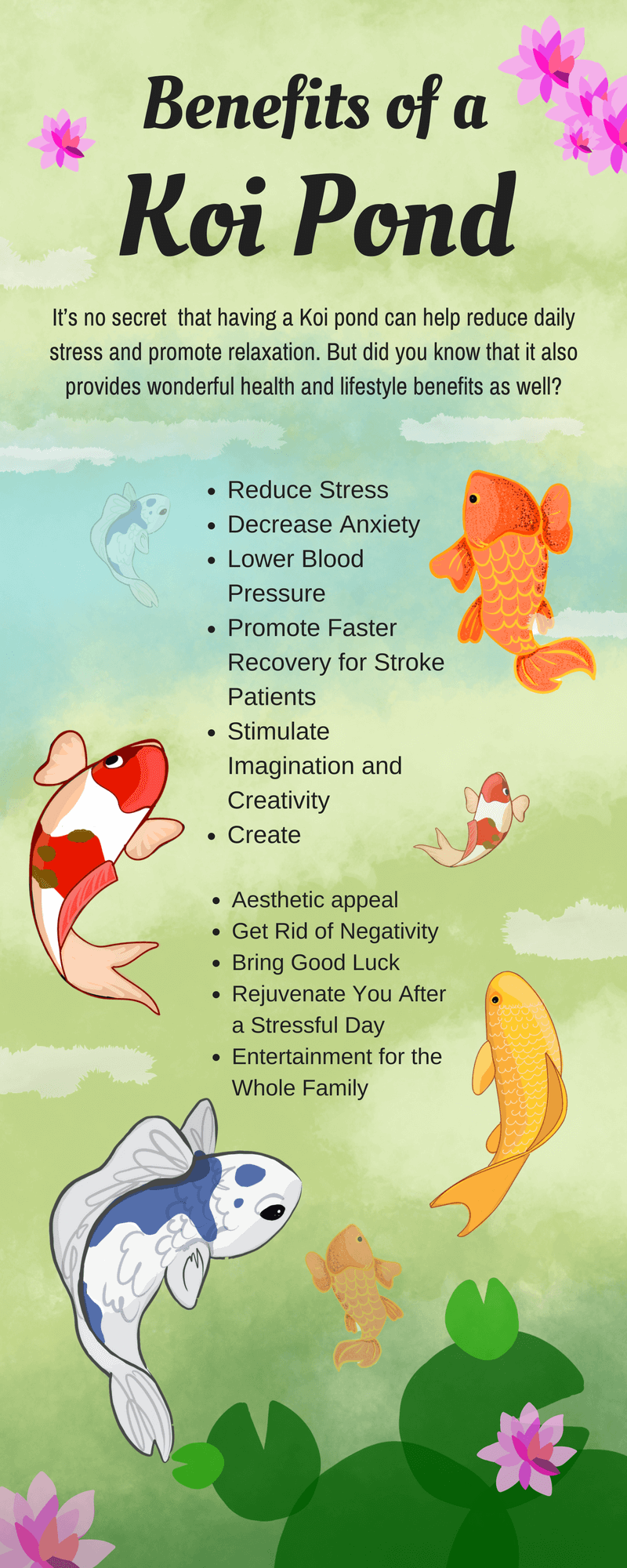 koi diseases diagnosis and recommended treatments of koi fish ...