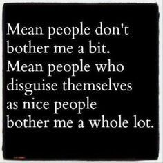 Mean people. Don\'t stoop to their level. Karma is real ...