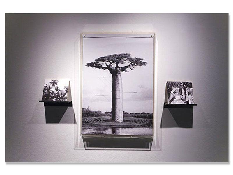 Casa Triângulo apresenta exposição de Ivan Grilo - Brasileiros