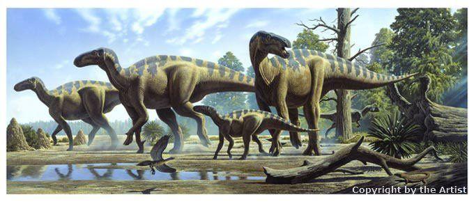 Resultado de imagen para manadas iguanodon raul martin
