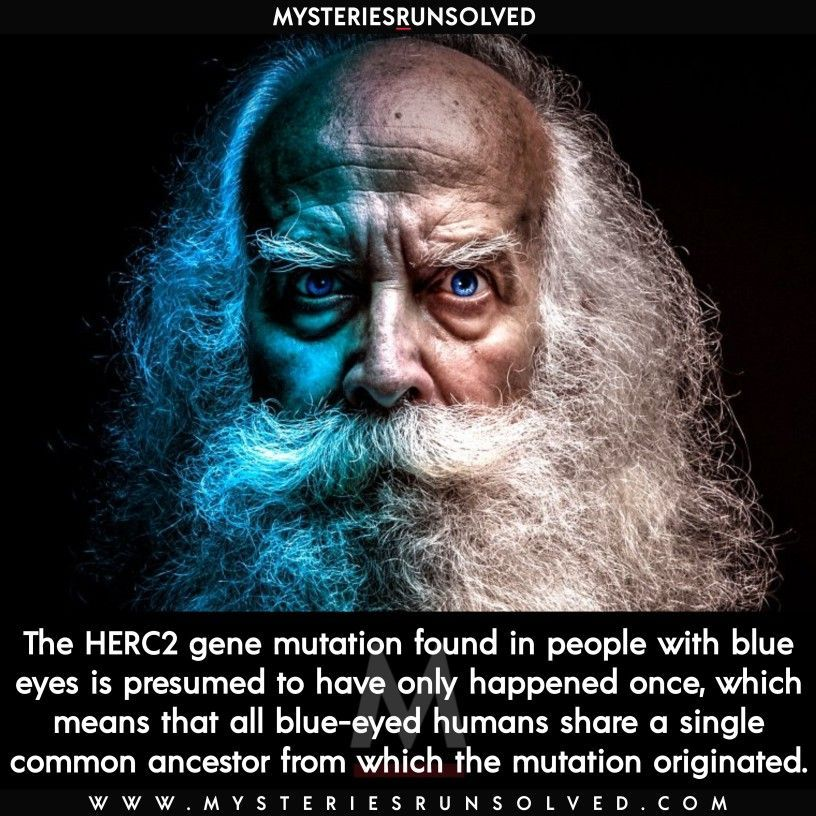 The Herc2 Gene Mutation Found In People With Blue Eyes Is Presumed To Have Only Happene In 2020 True Interesting Facts Facts About Humans Interesting Facts About World